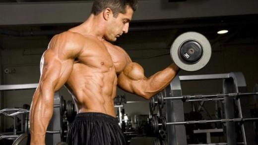 biceps geliştirme