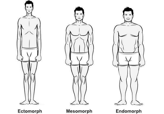 Vücut Tipinin Belirlenmesi