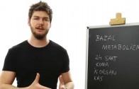 Bazal Metabolizma Nasıl Hızlandırılır?